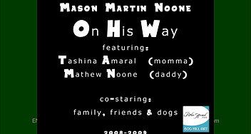 2008 2009 T M Mason On His Way