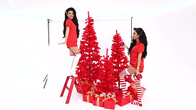 HAIRtamin | Christmas Shoot with Leyla Milani & Lilly Ghalichi