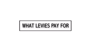 What Levies Pay For