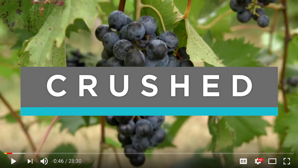 Feast TV: Crushed