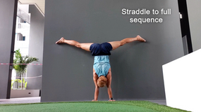 Straddle Handstands with Fizzy