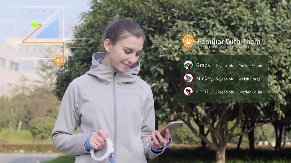 PETKIT GO - THE FIRST EVER BLUETOOTH SMART PET LEASH