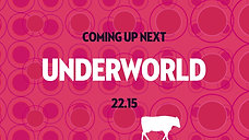 West Holts - Glastonbury Festival - Underworld
