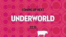West Holts - Glastonbury Festival - Underworld