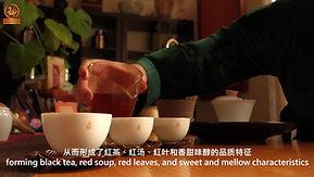古树红茶最全面的介绍视频