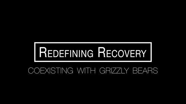 Redefining Recovery