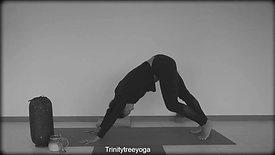 30 minutes Gentle Yoga