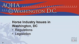 Public Policy in the Equine Industry