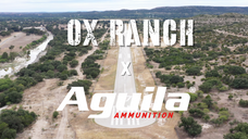 OX Ranch x Aguila Ammo