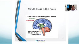 """""""Mindfulness - Who's Minding Your Business?"""""""