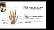 1.1 Intro to Hand &Wrist