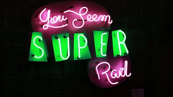 Signs of the Times: A Single Lady's Life in Neon