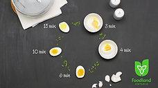190802 Ontario Eggs (Rectangle)