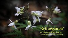 April come she will