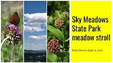 Sky Meadows State Park Stroll