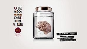 """ARP: """"Cérebro"""""""