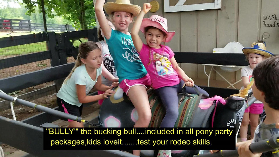 bully video 7