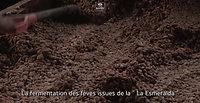 LA ESMERALDA FILM