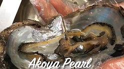 Akoya Shell Removal