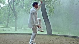 Chen Taiji 13 Postures of Grandmaster Zhu Tiancai