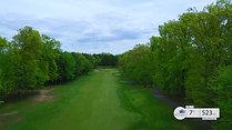 Woodlands #7