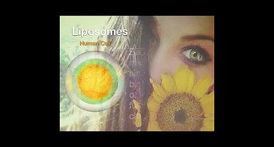 Liposomes 1 2