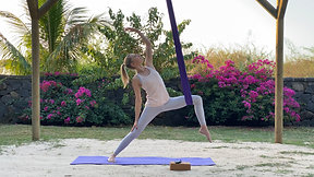 Aerial Yoga class 1 IN ENGLISH for the mobility of the spine