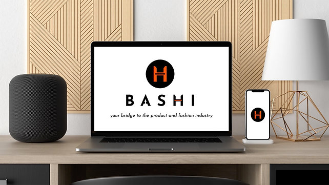 INTRODUCING BASHI