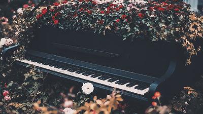 クラシック音楽を聴く