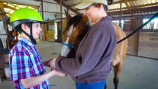CAMPFIRE CREEK THERAPEUTIC RIDING Intro