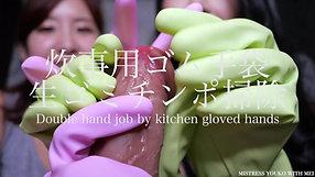 Kitchen Gloves sample