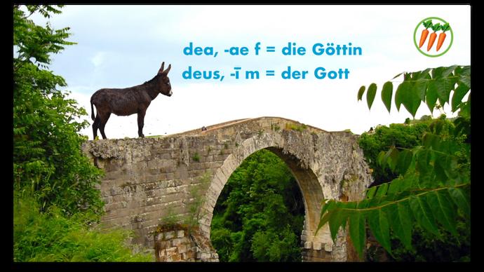 Latein Vokabeln Eselsbrücken (2. Staffel)