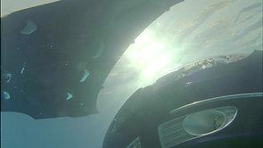 FIAT Underwater