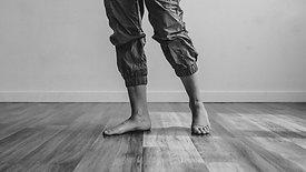 Tissue Rehab: Knee Repair