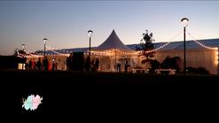 Wedding planner - Monticello