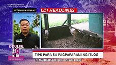 LDI Headlines on Pag-Improve ng Itlog ng Inahin August 15, 2021