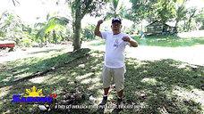 Newborn Sabong Chick Advice from Sabong Simple Lang January 4, 2020