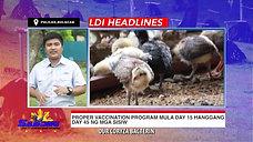 Sabong Vaccination Program with LDI Headlines November 8, 2020