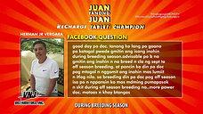 Sagot sa Juan Tanong on Off-Season Breeding with Doc Nilo April 4, 2021