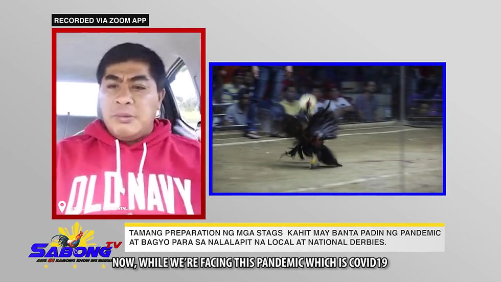 Alaga Tips sa Manok Sabong with Vet Ni Juan November 15, 2020