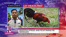 Ulat sa Digestive Stress on LDI Headlines June 27, 2021