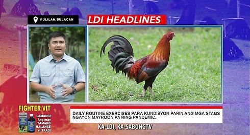 Exercises Para sa Manok Pangsabong sa LDI Headlines October 10, 2020