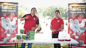Sabong Breeder Paolo Malvar for Thunderbird March 7, 2021