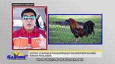 Sabong Carbo Loading with Vet Ni Juan December 20, 2020