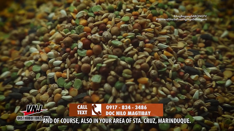 Doc Nilo on Mixing of Grains at Pellets for Conditioning July 18, 2021