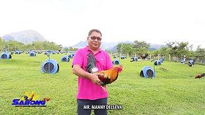 Manny Delleva's Bravo Bagsik Moment sa Sabong October 10, 2020