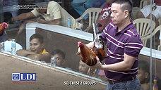 Mga Precon Tips from Raffy Yulo at Raymond Burgos August 1, 2021