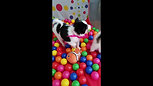 Ball Pit Finished