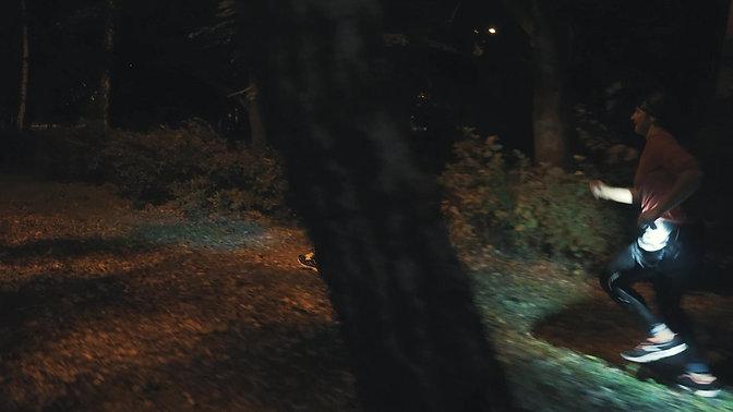 Crazy Squirrel Night Sprint