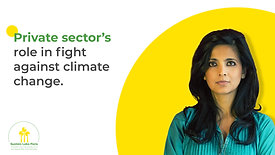 The Private Sector's Role in the Fight Against Climate Change